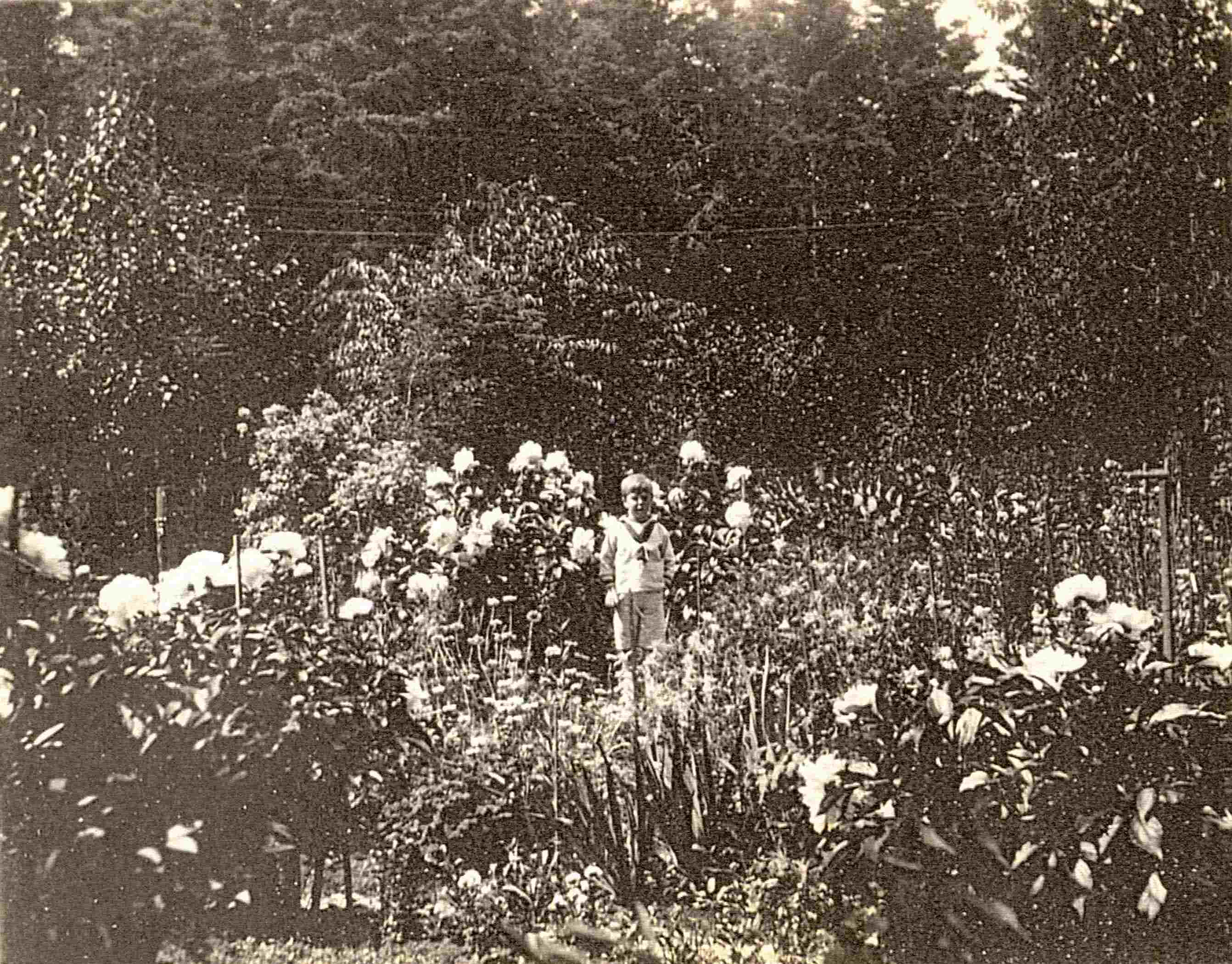 Les Jardins À L Anglaise un jardin à l'anglaise   musée du bas-saint-laurent