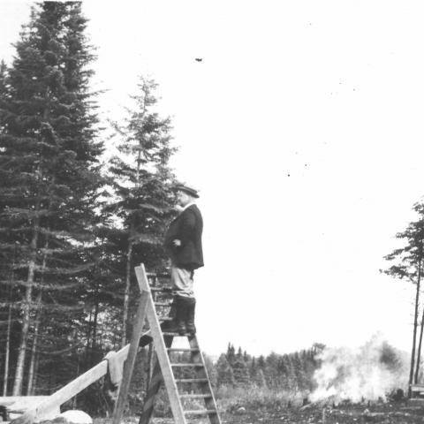 Un homme est grimpé dans un escabeau au centre d'un terrain déboisé. Des branches brûlent en arrière-plan.