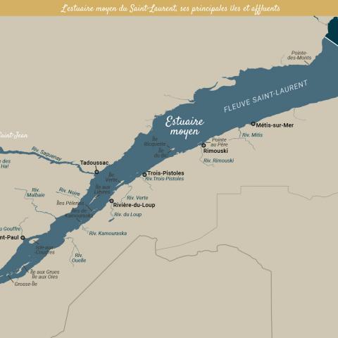Carte géographique de l'estuaire du Saint-Laurent (estuaire fluvial, moyen et maritime), de ses affluents et principales îles.