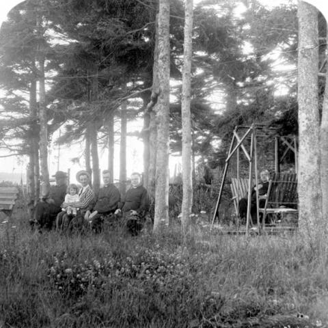 Des personnes sont assises dans une aire de repos boisée.