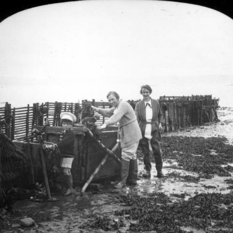 Deux femmes et un petit garçon observent le contenu d'une pêche à fascine.