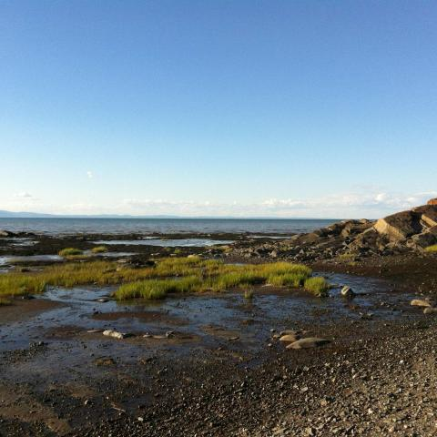 Natural landscape:Amarshy beach lined with rocks, the St. Lawrence and, on the other side, the mountains of Charlevoix.