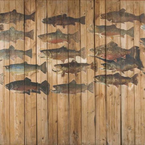 Une vingtaine de truites sont peintes sur des planches verticales.