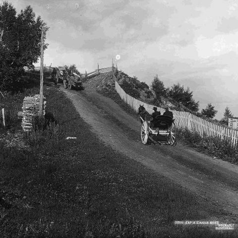 Trois voitures à chevaux grimpent une côte sur une route rurale, bordée par une clôture, à droite.